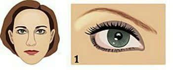 Если ширина расстояния между глазами примерно равно ширине глаза